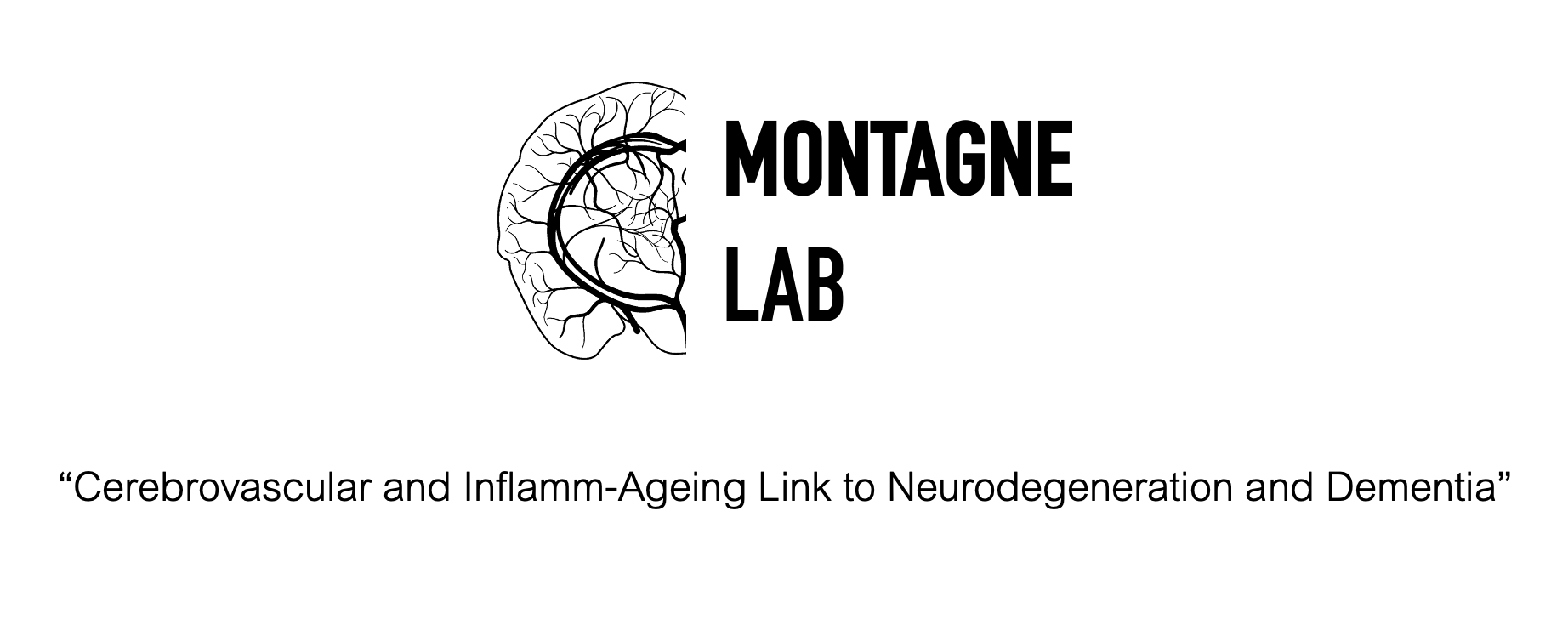 Montagne Lab